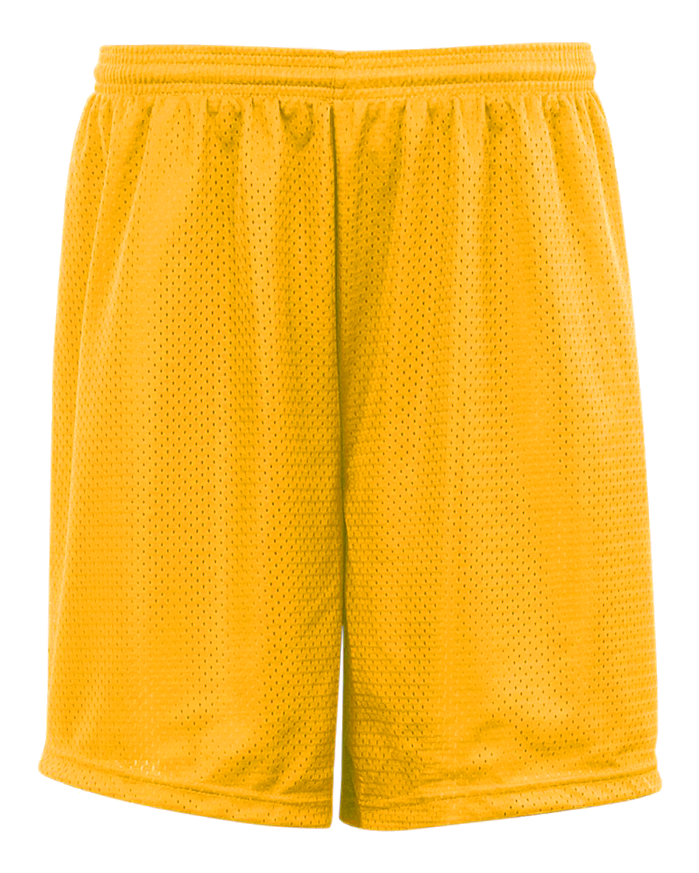 Mesh/Tricot 9 Inch Short - Gold